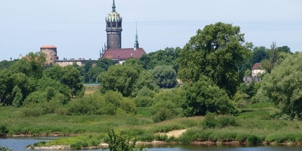 Full Day Tour Luther-Town Wittenberg - castle church